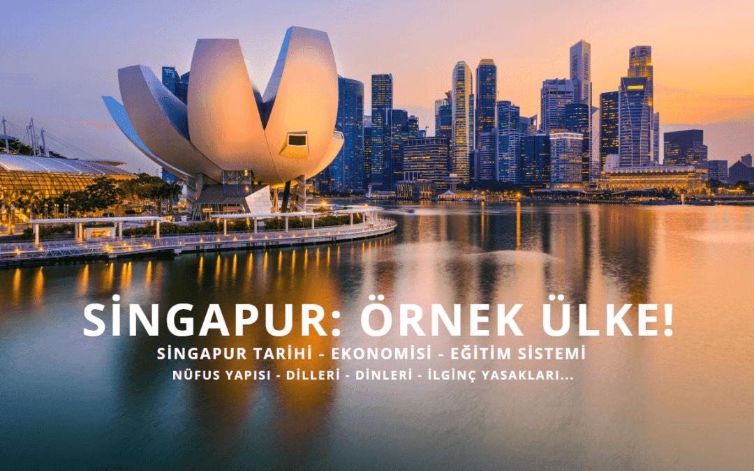 SİNGAPUR: ÖRNEK ÜLKE